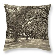 The Southern Way Sepia Throw Pillow by Steve Harrington