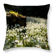 The Stump And The Snowdrops Throw Pillow by Anne Gilbert