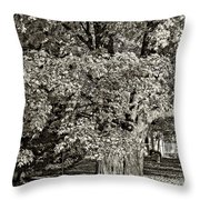 The Swinging Tree sepia Throw Pillow by Steve Harrington