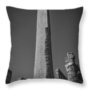 The Valley Of The Kings Part Vi Throw Pillow by Erik Brede