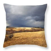 The View From The Side Of The Road Throw Pillow by Theresa Tahara