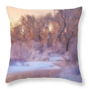 The Warmth Of Winter Throw Pillow by Darren  White
