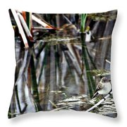 The Watch Throw Pillow by Elizabeth Winter