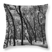 The Way You Move Me Throw Pillow by Laurie Search