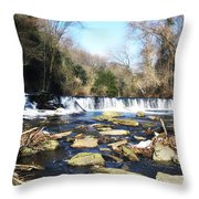 The Wissahickon Creek In February Throw Pillow by Bill Cannon