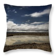 This Makes It All Worth It Throw Pillow by Laurie Search