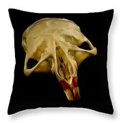 Three Blind Mice Throw Pillow by Jean Noren