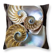 Three chambered nautilus Throw Pillow by Garry Gay