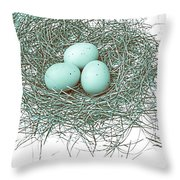 Three Eggs In A Nest Teal Brown Throw Pillow by Jennie Marie Schell