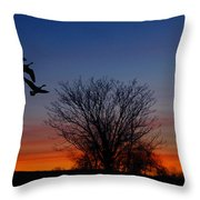 Three Geese At Sunset Throw Pillow by Raymond Salani III