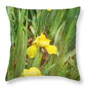 Three In A Row Throw Pillow by Joan Bertucci