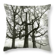 Three On A Hill Throw Pillow by Jack Zulli