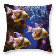 Three Pajama Cardinal Fish Throw Pillow by Amy Vangsgard