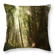 Through The Trees Throw Pillow by Mick Burkey
