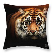 Tiger Bright Throw Pillow by Robert Foster