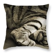 Tiger Paws Throw Pillow by Dan Sproul