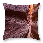 Tight Squeeze Throw Pillow by Dustin  LeFevre
