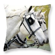 Tillie And Bruce #2 Throw Pillow by Jeannie Rhode Photography