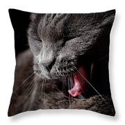 Time For A Nap Throw Pillow by Rona Black