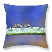 Tiny Waterworld And A Leaf Throw Pillow by Heiko Koehrer-Wagner