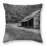 Tired And Weathered Throw Pillow by Jon Glaser