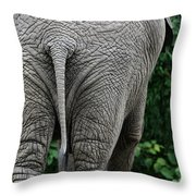 To The Rear March Throw Pillow by Karol  Livote