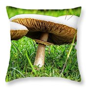Toadstools V2 Throw Pillow by Douglas Barnard