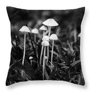 Toadstools V3 Throw Pillow by Douglas Barnard