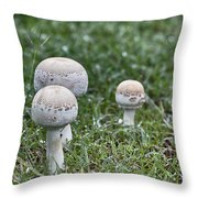 Toadstools V9 Throw Pillow by Douglas Barnard