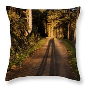 Together Throw Pillow by John Daly
