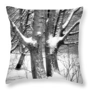 Together Throw Pillow by Wim Lanclus
