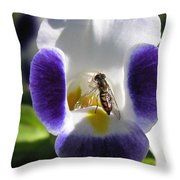 Torenia from the Duchess Mix Throw Pillow by J McCombie