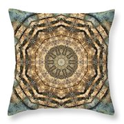 Touched By Light Throw Pillow by Tom Druin