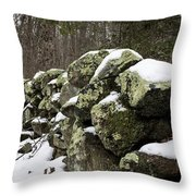Traces Of The Past Throw Pillow by Andrew Pacheco