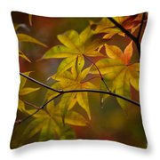Tranquil Collage Throw Pillow by Mike Reid