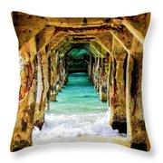 Tranquility Below Throw Pillow by Karen Wiles