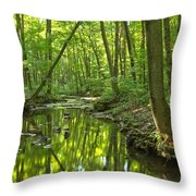 Tranquility In The Forest Throw Pillow by Adam Jewell