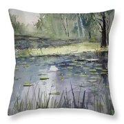 Tranquillity Throw Pillow by Ryan Radke