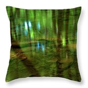 Translucent Forest Reflections Throw Pillow by Adam Jewell