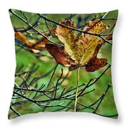 Trapped Throw Pillow by Bonnie Bruno