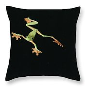 Tree And Leaf Frog Jumping Throw Pillow by Michael and Patricia Fogden