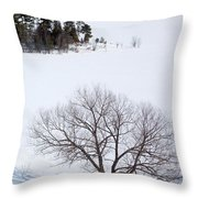 Tree And The Point In Winter Throw Pillow by Rob Huntley