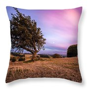 tree at sunset Throw Pillow by John Farnan