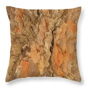 Tree Bark Abstract Throw Pillow by Cindy Lee Longhini
