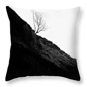 Tree in mist ii Throw Pillow by John Farnan