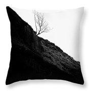 Tree In Mist II Throw Pillow by John Farnan