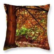 Tree In The Park. De Haar Castle. Utrecht  Throw Pillow by Jenny Rainbow