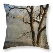 Tree In Winter Throw Pillow by Lois Bryan
