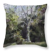 Tree Throw Pillow by Janet Felts
