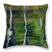 Trees Reflections On The River Throw Pillow by Heiko Koehrer-Wagner